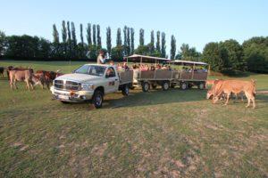 Safari Park Dvůr Králové, tipy na výlety, Informační centrum Pod Zvičinou
